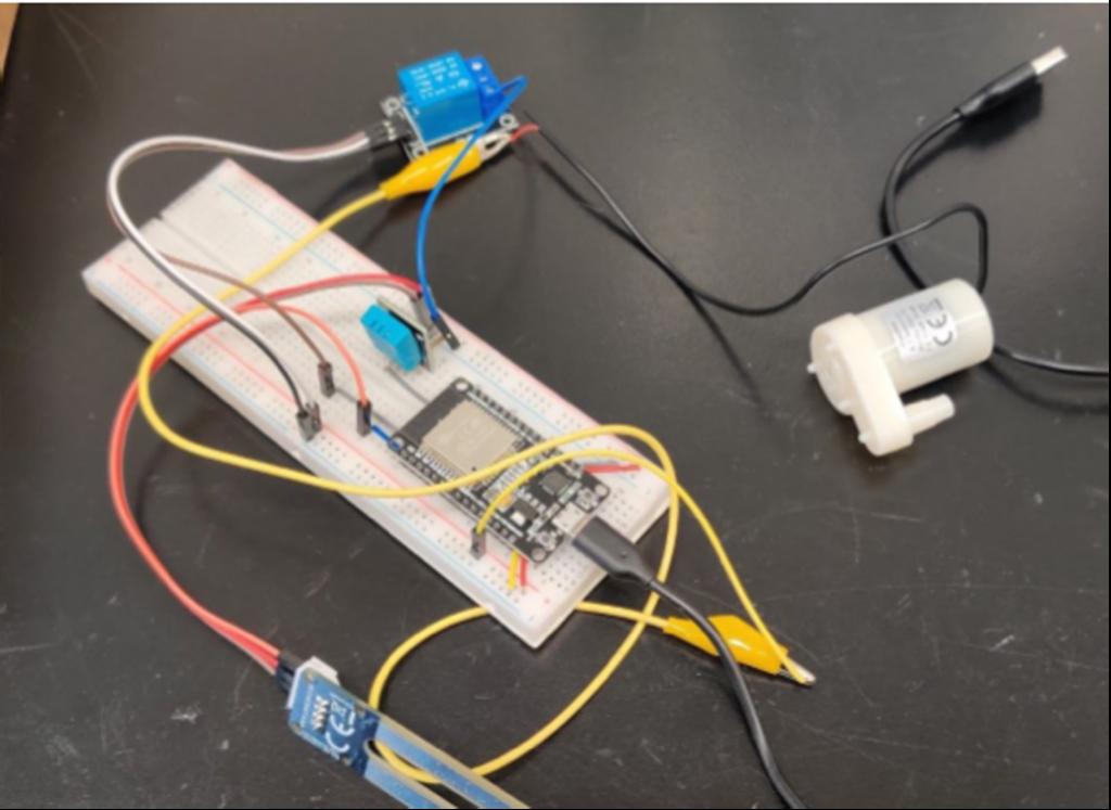 Bild-1-Unser-erstes-Projekt-Automatische-Pflanzenbewaesserung
