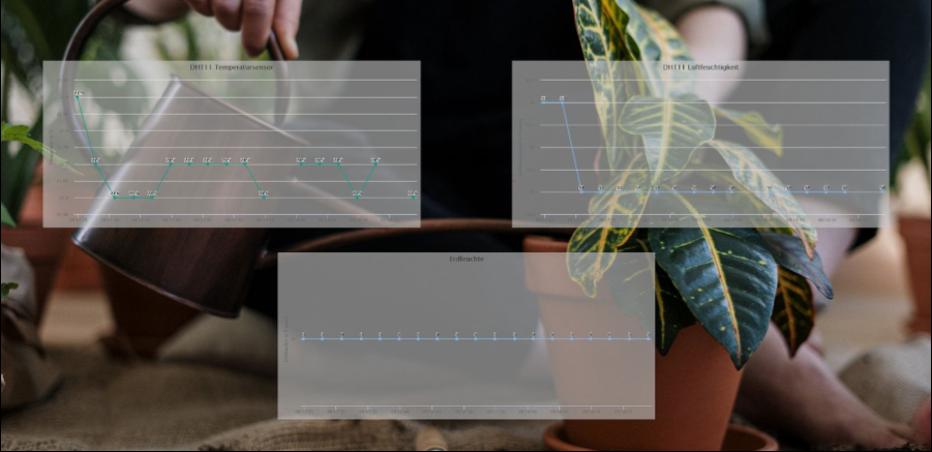 Bild-2-Unser-erstes-Projekt-Automatische-Pflanzenbewaesserung.png